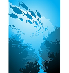 Underwater with Fish vector image