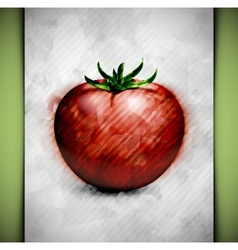Tomato watercolor vector