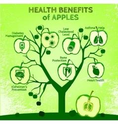 Apple health benefits 02 a vector