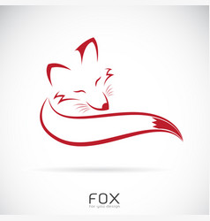red fox design on white background vector image