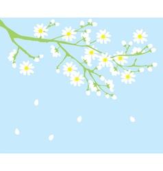 Spring s vector