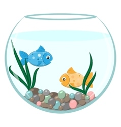 Golden and blue fish in the round aquarium vector
