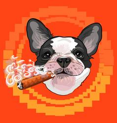 Cute dog head with a cuban cigar vector