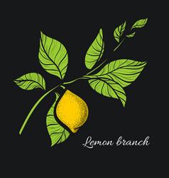Lemon dark vector