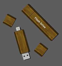 Wood dual-usb micro usb flash drive vector