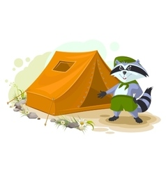 Summer holiday camp scout raccoon standing near vector