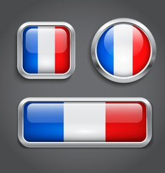 France flag buttons vector