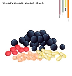 Blueberries with vitamin k c b and minerals vector