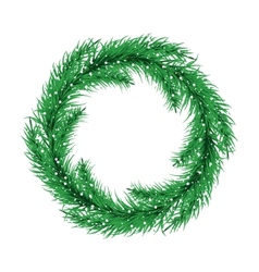 Green christmas tree wreath spruce branches vector