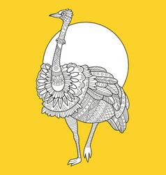 Ostrich bird fashion vector