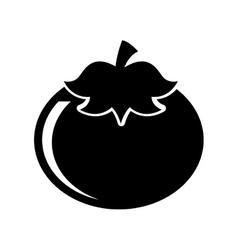 tomato fresh vegetable isolated icon vector image