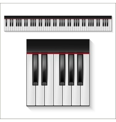 Piano keys set vector