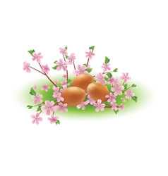 Eggs and branches with pink flowers vector