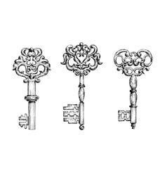 Vintage ornate skeleton keys in sketch style vector