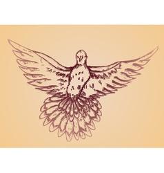 Dove sketch2 vector