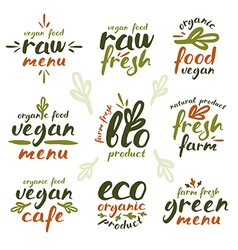 Raw vegan labels and badges vector image