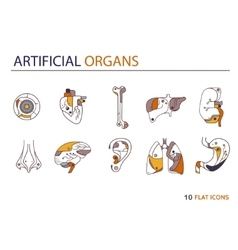 Flat icons - artificial organs 3 vector