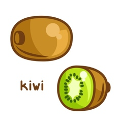 Stylized of fresh kiwi on white vector