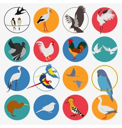 Birds icon set flat style vector