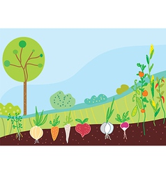 Garden in spring with vegetables vector image vector image