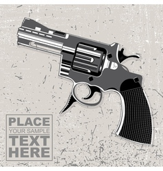 image of the weapon on grunge background vector image