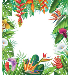 tropical plants and flowers vector image vector image