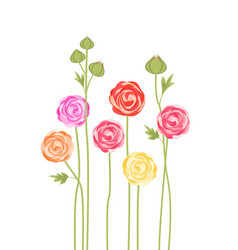 Bouquets of flowers vector