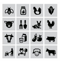 Agriculture and farming vector
