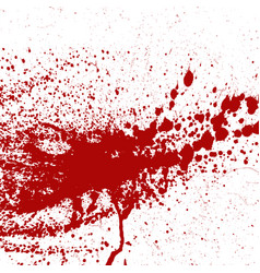 Blood or paint splatters splash spot red stain vector