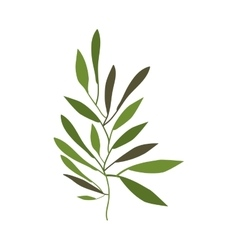 Branches with leaves decoration vector