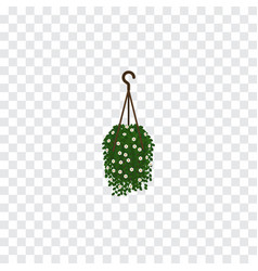 isolated hanging isometric blossom element vector image
