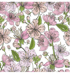 realistic sakura hand drawn seamless pattern with vector image vector image