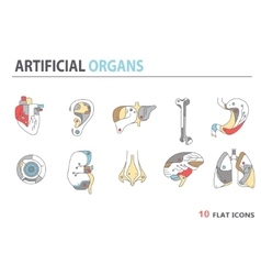 Flat icons - artificial organs 4 vector