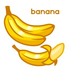 Stylized of fresh bananas on white vector