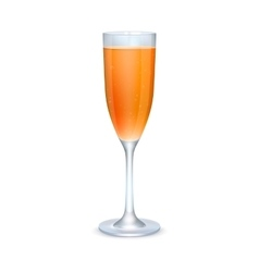 Glass of orange cocktail vector