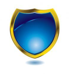 blue shield vector image vector image