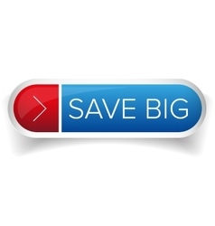 Save Big button vector image