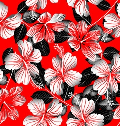 Tropical white hibiscus flowers with black leaves vector image vector image