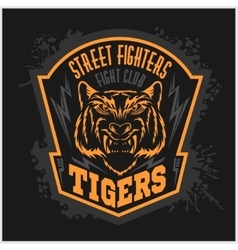 Street fighters - fighting club emblem on dark vector