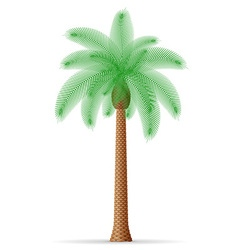 Palm tree 21 vector