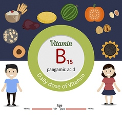 Vitamin b15 infographic vector