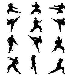 karate vector image