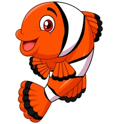 Adorable clown fish posing isolated vector