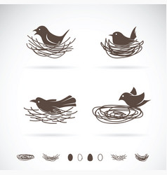 Bird and nests on white background vector