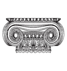 Graeco-ionic capital design of a scroll rolled vector