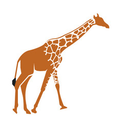 Isolated abstract giraffe vector