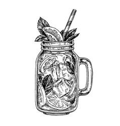 lemonade ink sketch vector image