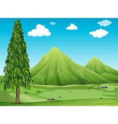 Scenery vector image vector image