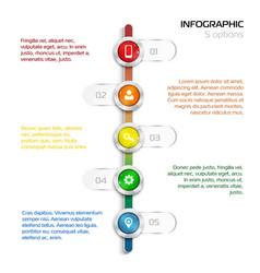 Structure timeline 5 steps vertical timeline vector