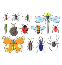 insects set in flat style line art bugs icon vector image vector image